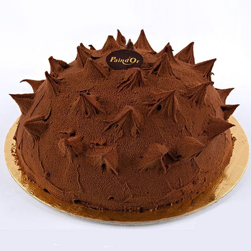 Spiky Chocolate