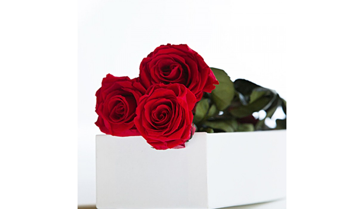 Flowers Lebanon Same Day Flowers Free Delivery To Beirut With