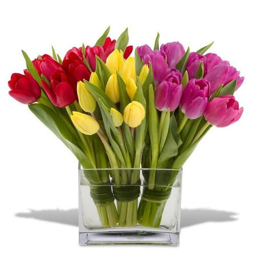 Send Bright Tulip A Vivid Color Bouquet Of Tulips To Express Your