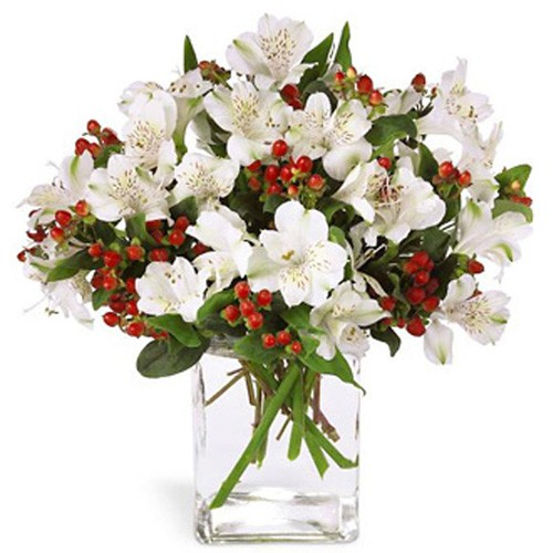 Send white christmas our assorted red and white flowers to cyprus white christmas mightylinksfo