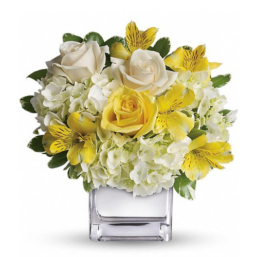Send bright blooms our yellow and white flowers in a glass vase to the bright blooms arrangement combines gorgeous sunshiny yellow and white flowers to create an exquisite display of radiance and beauty mightylinksfo