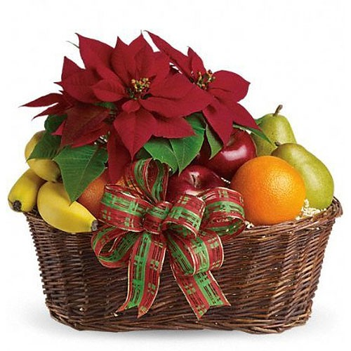 Poinsettia and Fruits